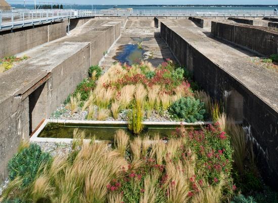 Jardin Orpins y Gramíneas, Base St Nazaire, Estuaire, Francia. Gilles Clement