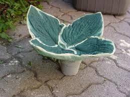 Resultado de imagen para how to make concrete leaves
