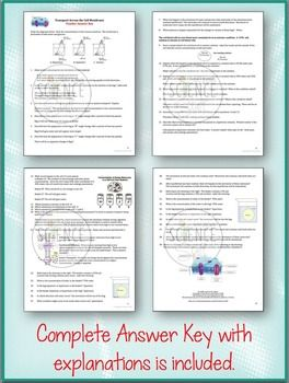 Cell Transport Worksheet Osmosis Diffusion Cell Transport