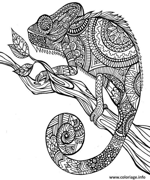 Coloriage Anti Stress Animaux Jungle Dessin A Imprimer Cut It Out