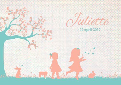 Geboortekaartje Juliette - Pimpelpluis - https://www.facebook.com/pages/Pimpelpluis/188675421305550?ref=hl (# meisje -  dieren - konijn - vlinder - olifant - bloesem bloemen - zusje - bellen blazen - boom - stoet - vrolijk  - retro - vintage - silhouet - lief - origineel)