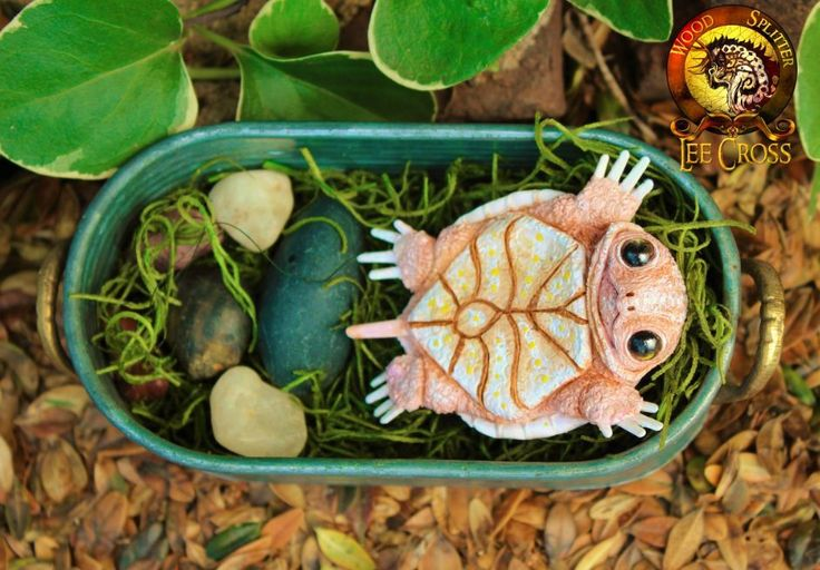 Woodsplitterlee Handmade Sculpted Baby Toodles The Baby Turtle with Turtle Tub | eBay