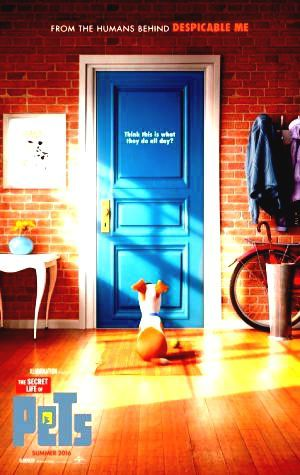 Secret Link Regarder The Secret Life of Pets Complet Film Streaming WATCH The Secret Life of Pets Online Complete HD Cinemas The Secret Life of Pets HD FULL Movies Online Click http://flix.vodlockertv.com?tt=2709768 The Secret Life of Pets 2016 #PutlockerMovie #FREE #Movien This is Full