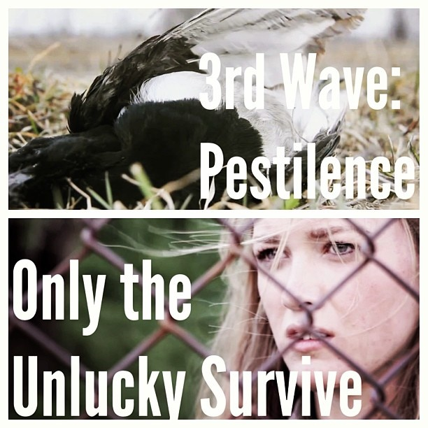 the 5th wave books
