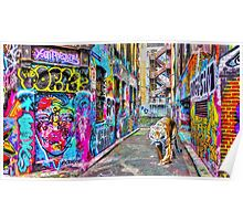 The Tiger in Rutledge Lane Poster