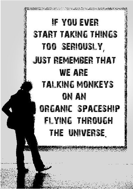 Lol: Words Of Wisdom, Remember This, Monkeys, Funny Pictures, Reality Check, Funny Quotes, Perspective, Inspiration Quotes, True Stories