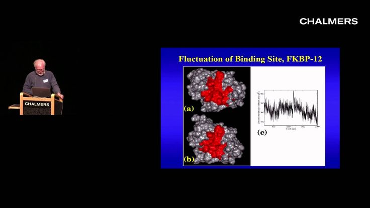 Andrew McCammon: Molecular Dynamics and Drug discovery