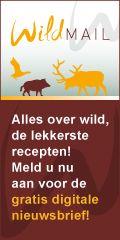 Wildrecept: Kangoeroefilet met mangosaus - Wildsoorten: van fazant tot eend, van wild zwijn tot haas