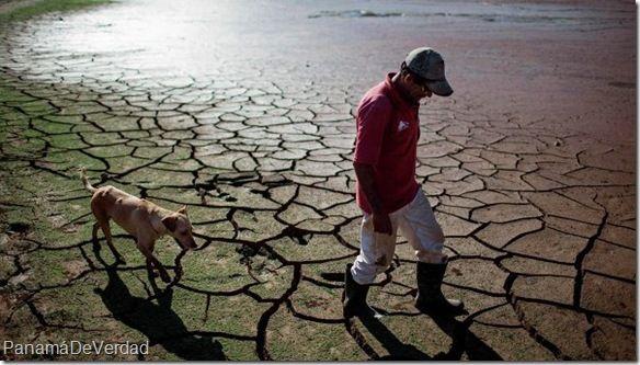 La sequía extrema obliga a municipios de Brasil a usar agua tratada del alcantarillado - http://panamadeverdad.com/2014/10/31/la-sequia-extrema-obliga-municipios-de-brasil-usar-agua-tratada-del-alcantarillado/