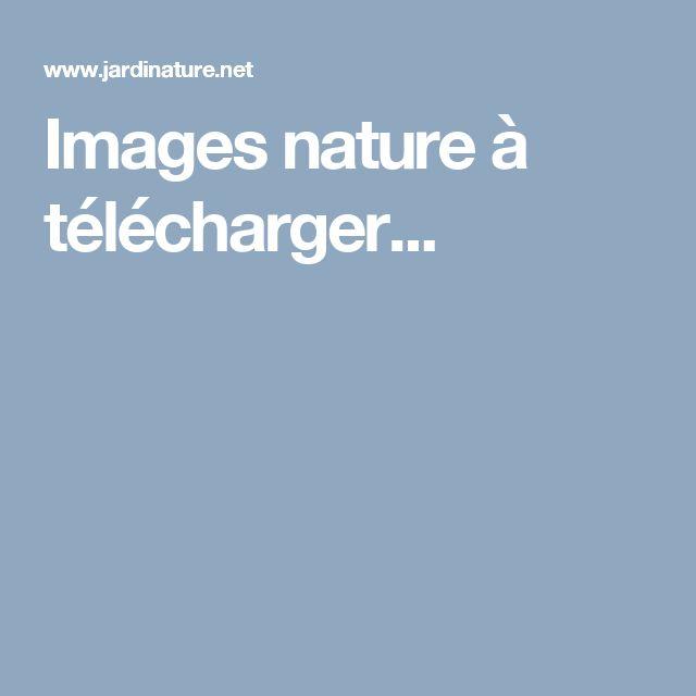 Images nature à télécharger...