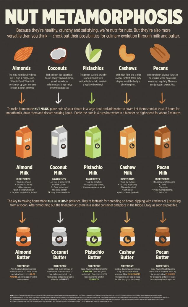 Make Your Own Nut Milk and Butters With This Visual Guide | Lifehacker