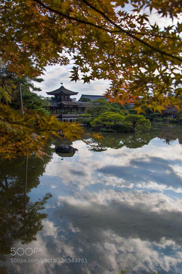 Heian Jingu Pond - Pinned by Mak Khalaf The Heian Jingu shrine's garden with his pond in Kyoto Japan. Travel architectureasiacloudscolorgreenheianjapanjingujinjakyotopondreflectionshrinetempletraveltreewater by pasamatt