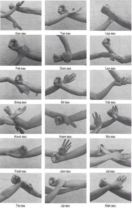 Wing Chun kung fu hands.