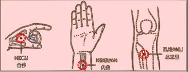 3-1-2 Meridiántorna
