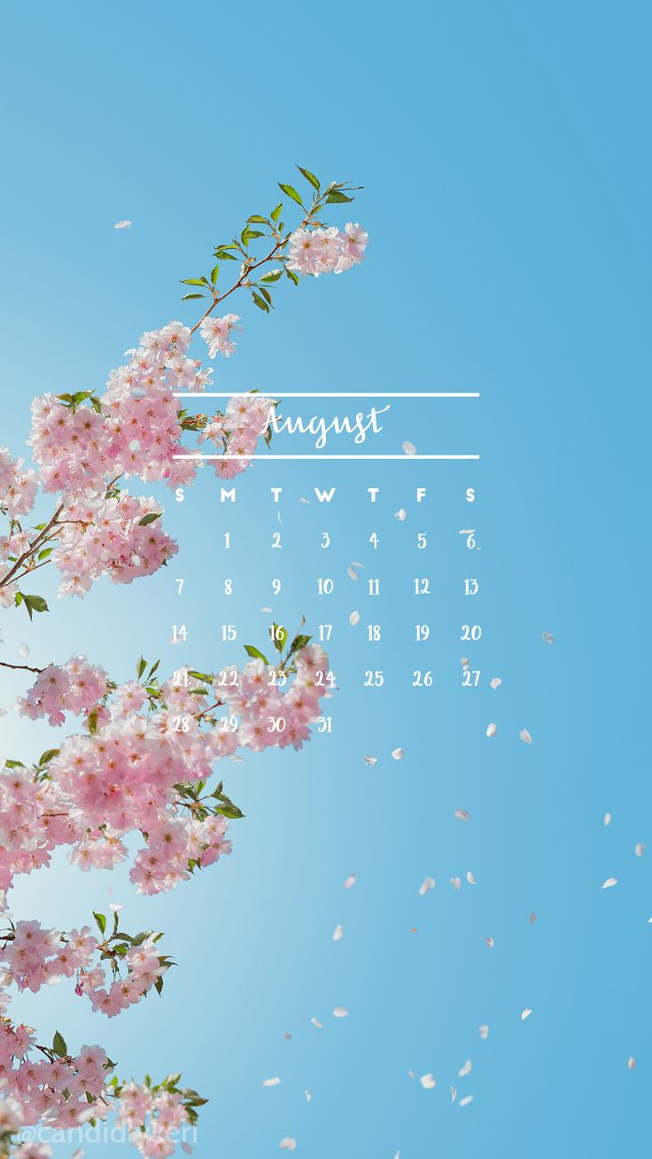 Flowers tree pink and blue background  August calendar 2016 wallpaper you can download for free on the blog! For any device; mobile, desktop, iphone, android!