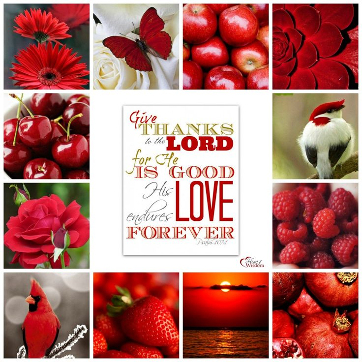 Pinterest Inspired Bible Verse Collages #Red #Heartofwisdom