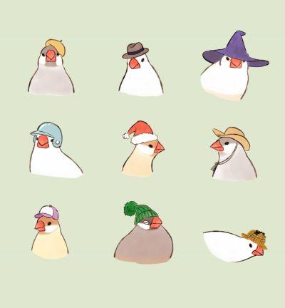 Birb hats