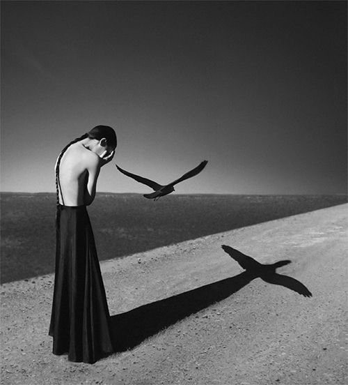 Noell S. Oszvald    Stunning! Genius-in love with this photo. Can we say decisive moment?      Woman, bird, shadow, black and white, decisive moment.