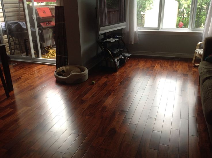 Hardwood Floor Engineered Trillium Imperial Walnut From Home Depot First Floor Updates