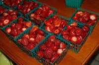 How to Make a Garden Strawberry Picking Fresh Jam Recipe
