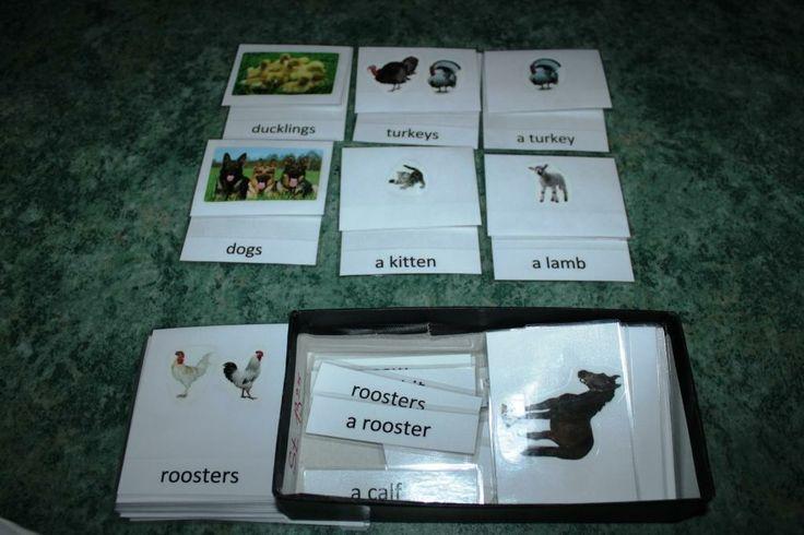Jazyk-třísložkové karty