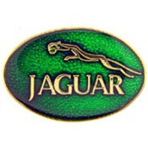 "Jaguar Oval Logo Pin Green 1"" by FindingKing. $8.99. This is a new Jaguar Oval Logo Pin Green 1"""