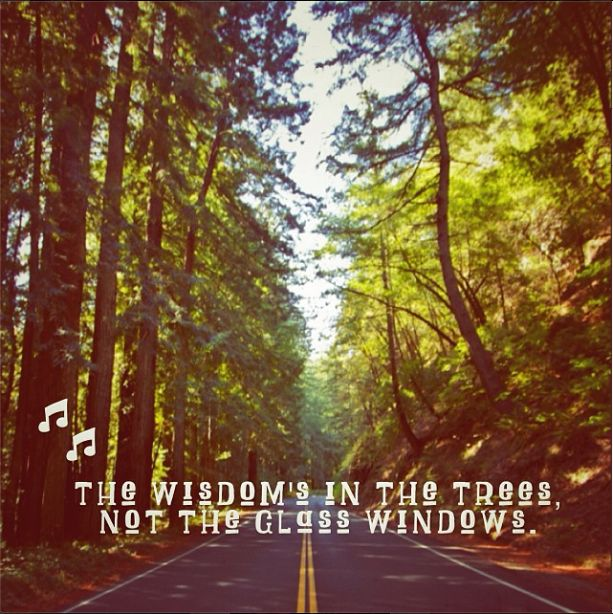 """The Wisdom's in the Trees, Not the Glass Windows"" Jack Johnson road trips."
