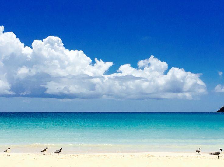 Playa Flamenco, Culebra Hermosa, la mas hermosa del mundo❤️☀️⛱