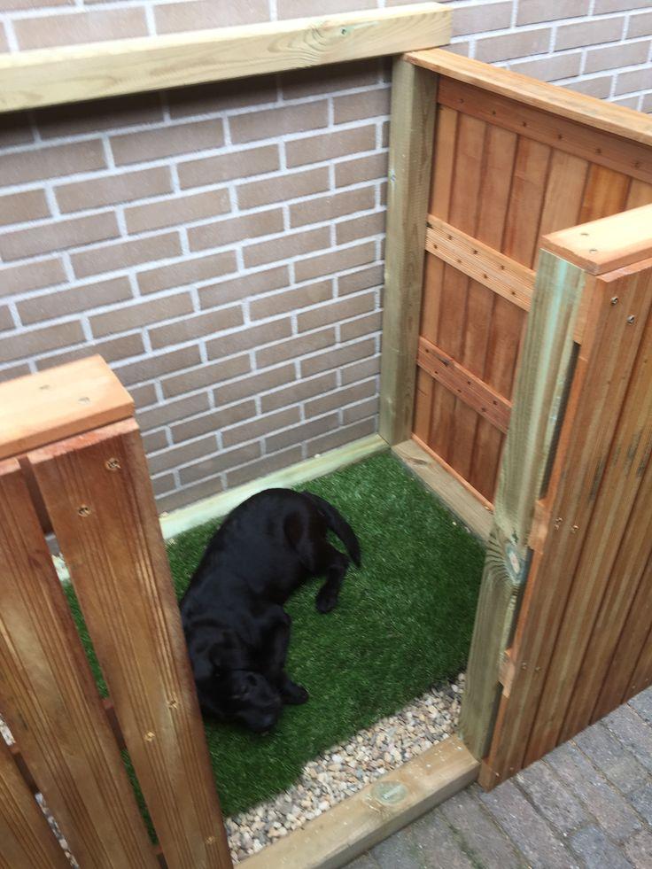 Hondentoilet In De Tuin Honden Tuin Hondenhok Buiten