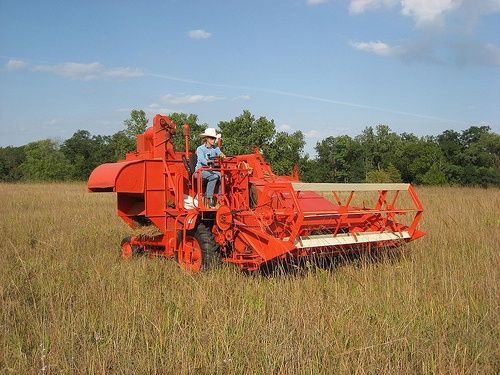 old combines | old combines harvesting - Google Search
