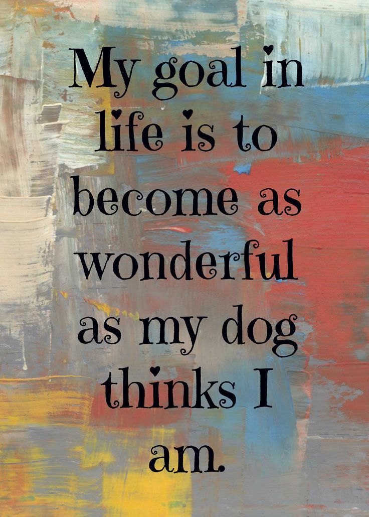 My goal in life is to become as wonderful as my #dog thinks I am.