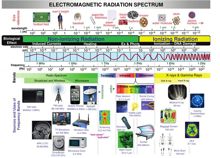 Electromagnetic radiation spectrum. Use, ionization, compared sizes of the waves.