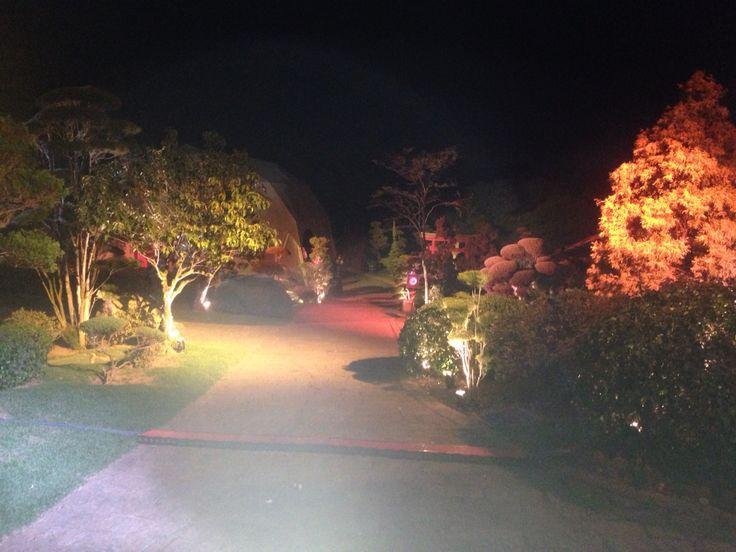 The garden at the artist village