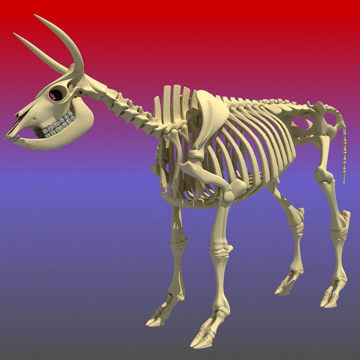 cow skeleton 3d max