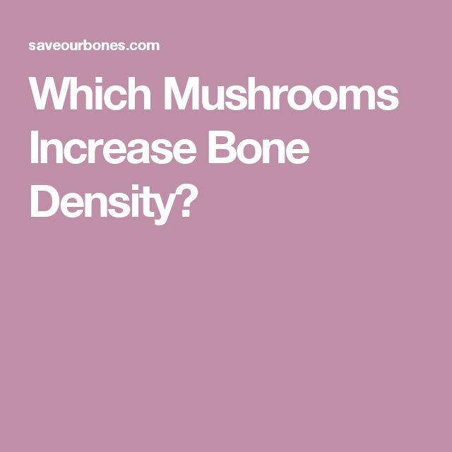 Which Mushrooms Increase Bone Density?