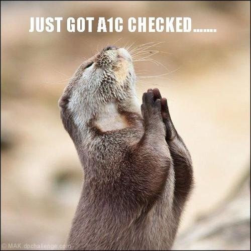 Just Got A1C Checked...