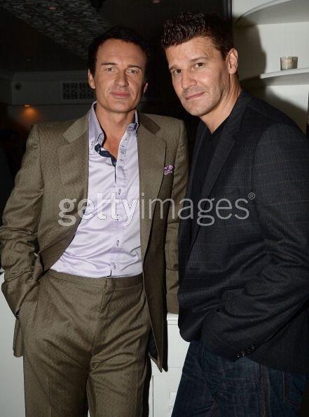 Actors Julian McMahon and David...