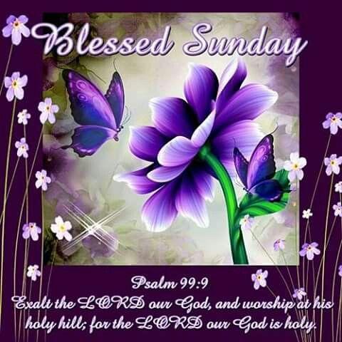 Psalms 99:9 KJV