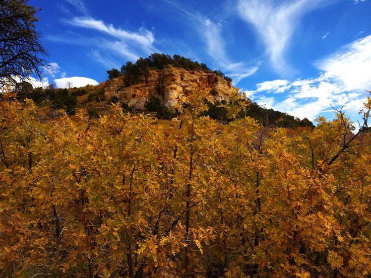 A National Park Still Not Famous Enough: Zion, Utah