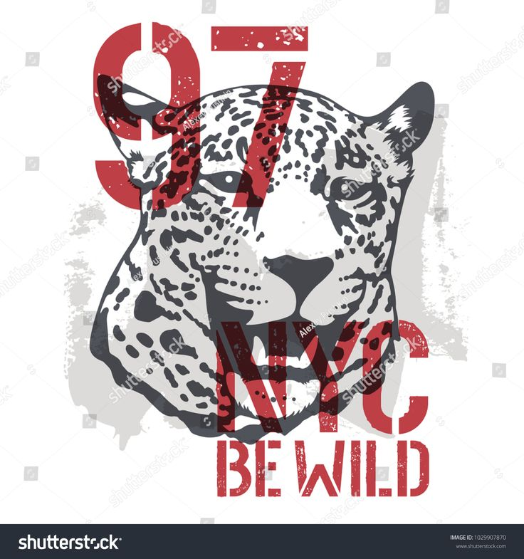 Leopard t shirt graphics. Roaring Leopard Head vector illustration with grunge design element. Be Wild fashion slogan typography. New York Graphic Tee