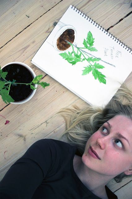Hanging out with my tomato plant