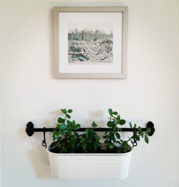 Ikea Fintorp Rail Used To Hang Plants On The Wall