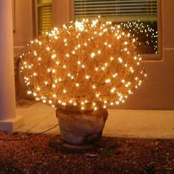 Oh Tumbleweed, Oh Tumbleweed.... - Cute post even tumbleweeds are beautiful :)