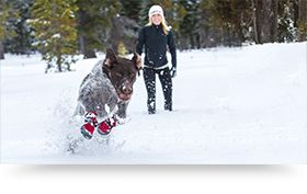 Our dogs love the snow just as much as we do, but running through deep powder can be tough on their paws. Try these dog snow boots on your next winter walk to extend your adventure and keep Fido's paws warm and toasty!