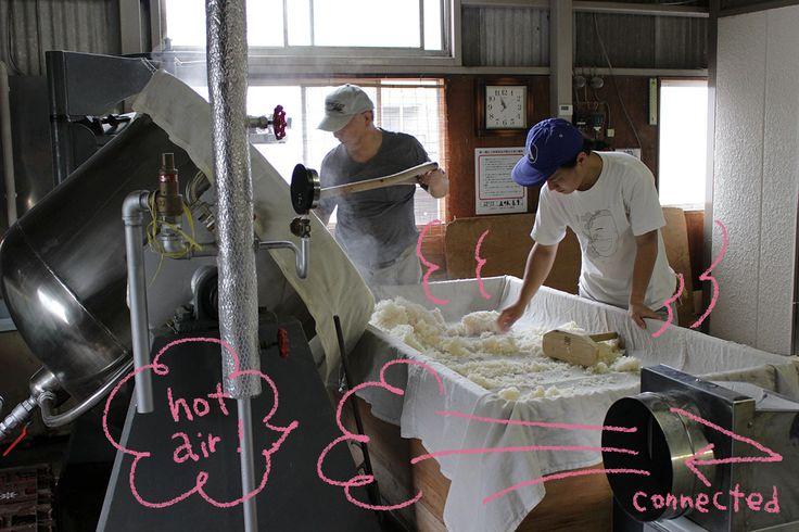 How Koji is made ? From Gomi-Shoyu, Koji Manufactrer in Yamanashi   Cupido