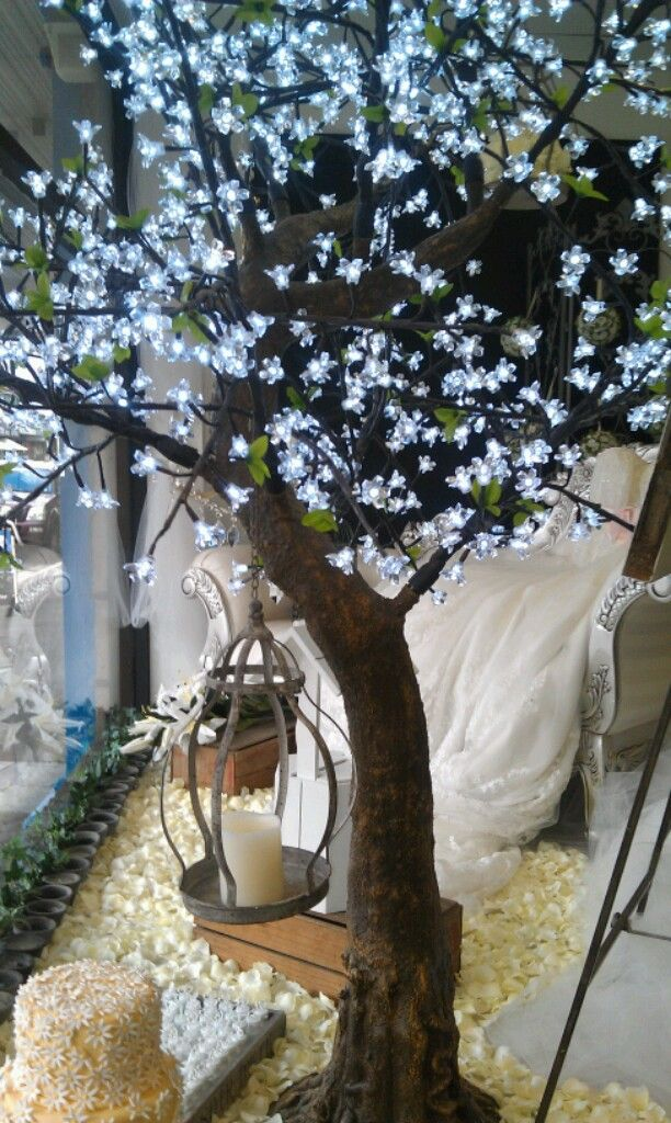 Our gorgeous light tree $199.00 to hire