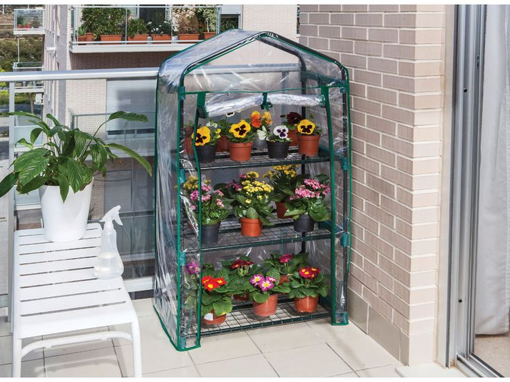 No tienes porqué esperar a la primavera o verano si tu verdadera pasión son las flores y plantas. Con un pequeño invernadero con estantes puedes plantar y cultivar lo que necesites, protegiéndolo de las inclemencias del tiempo y de los insectos.