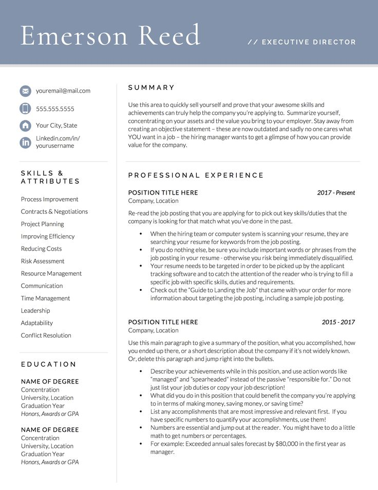 Executive Resume Template Professional Resume Template