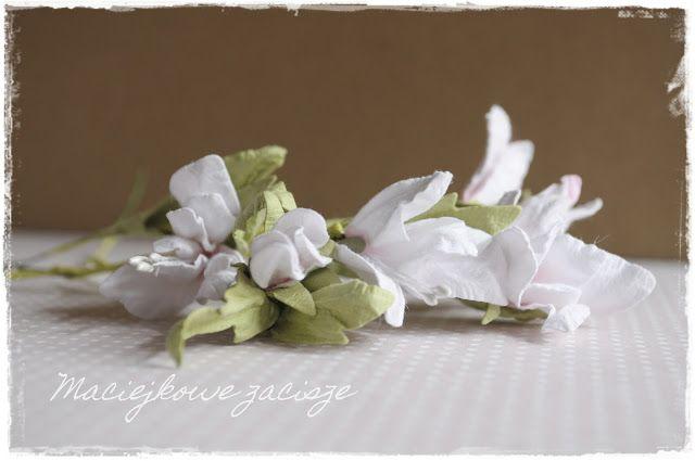 maciejkowe zacisze: Kwiatki samoręczne