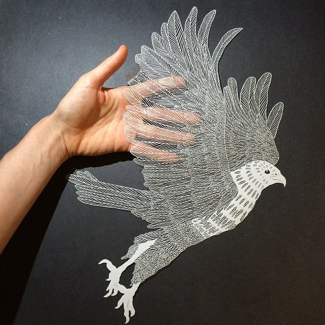 Best Cut Paper Artist Maude White Images On Pinterest Paper - Amazing artist carves beautiful designs paper